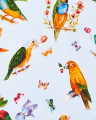 SS17Heplovebirds_C